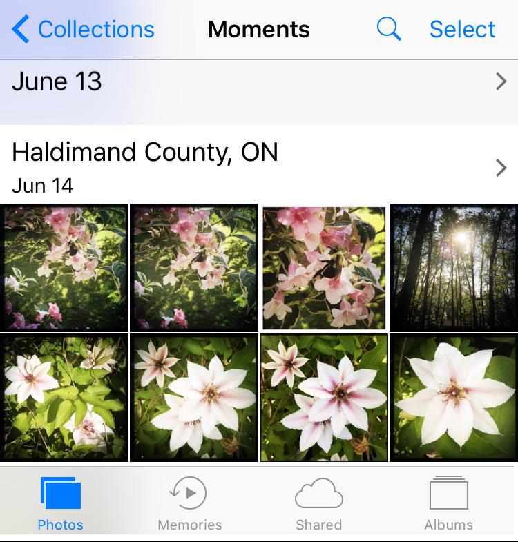 apple photos, icloud, sharing, editing, backing up, syncing