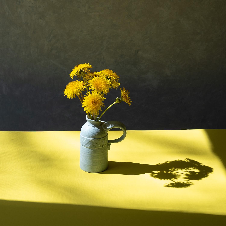 Dandelion in Vase