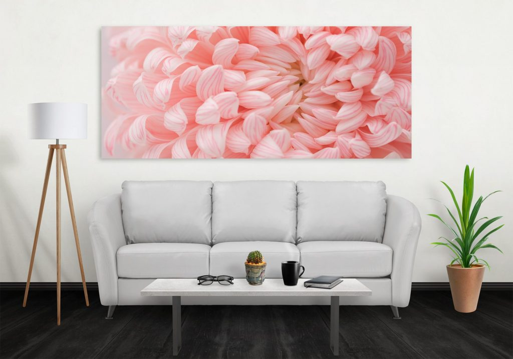 chrysanthemum image above couch
